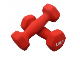2021 Gym Sports Weight Lifting Cast Iron Rubber Coating Colorful Dumbbell 1LB 2LBS 3LBS 5LBS In Stock