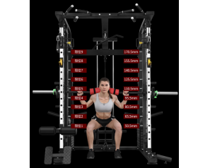 Wholesale Smith squatting machine for fitness expert/squat rack