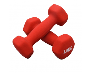 Wholesale Cast Iron Rubber Coated Dumbbell Fitness Equipment